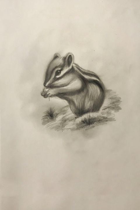 Sketching - Chipmunk - Online Lesson Demo Works