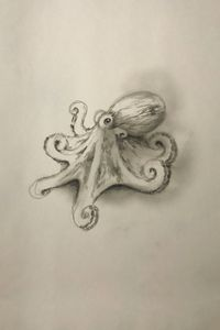 Sketching - Octopus