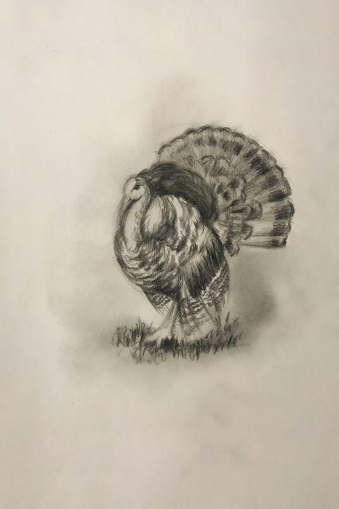 Sketching - Turkey - Online Lesson Demo Works