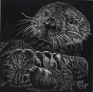 California Sea Otter and Sea Urchin