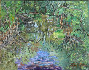 A pond reflection