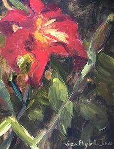 A Lily Among Zinnias