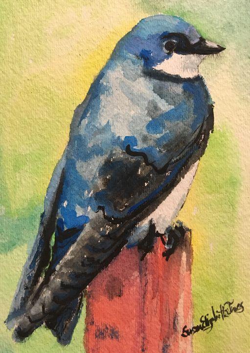 Swallow - Colorful & Charming Art of Susan Elizabeth Jones