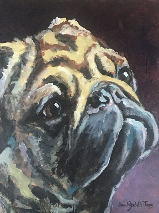 Pug Shot - Colorful & Charming Art of Susan Elizabeth Jones