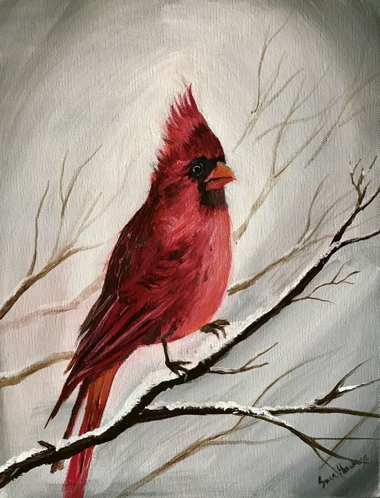 Winter Cardinal - Blue Horse Fine Art Co.