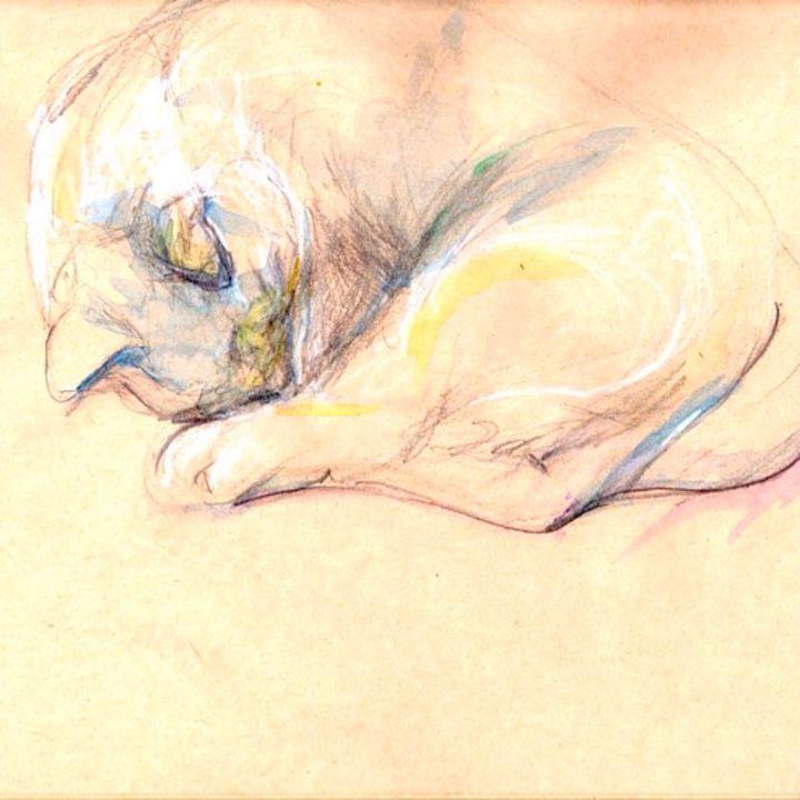 Cat nap - Le Chat