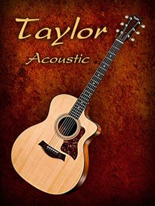 Wonderful Taylor Acoustic Guitar