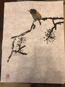 An overweight bird and Plum Blossom