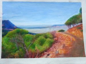 Road To Mt Oxley