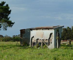 'Shattered Shelter'