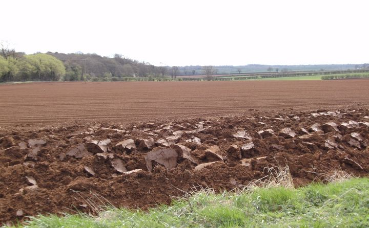 'Ploughed Field' - MGL