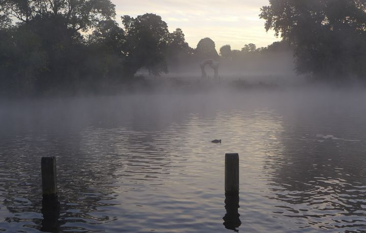 'Henry Moore looming in the mist' - MGL