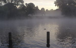'Henry Moore looming in the mist'