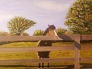 Rhodes Farm Horse