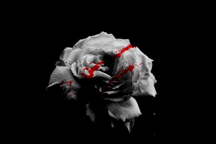 Bloody Rose - Sasha