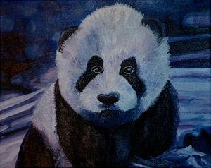 Baby Panda Print on Canvas (Violet)