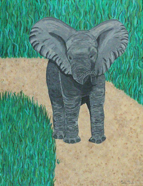Elephant stroll - Casey Tabor