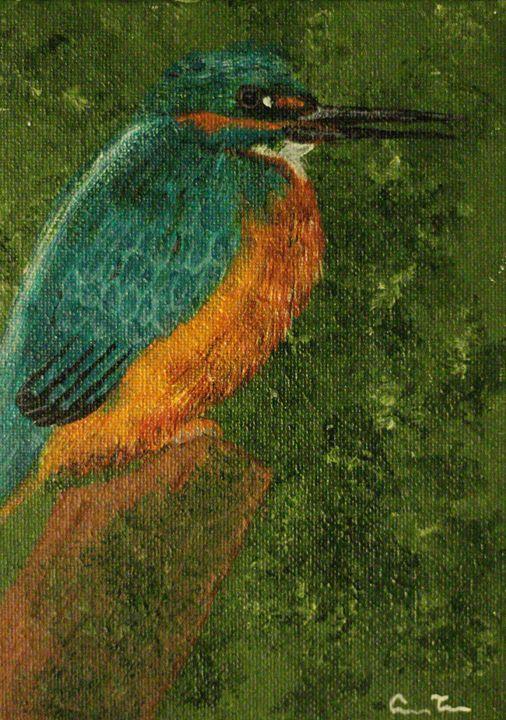 Kingfishing - Casey Tabor