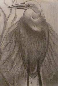 wading egret - kojimomohara