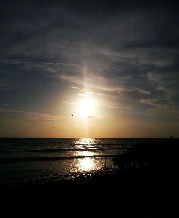 Sunset like a choke hold - Wounds become passageways, dark preludes