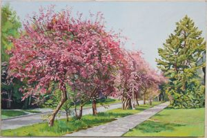 Blooming apple trees alley