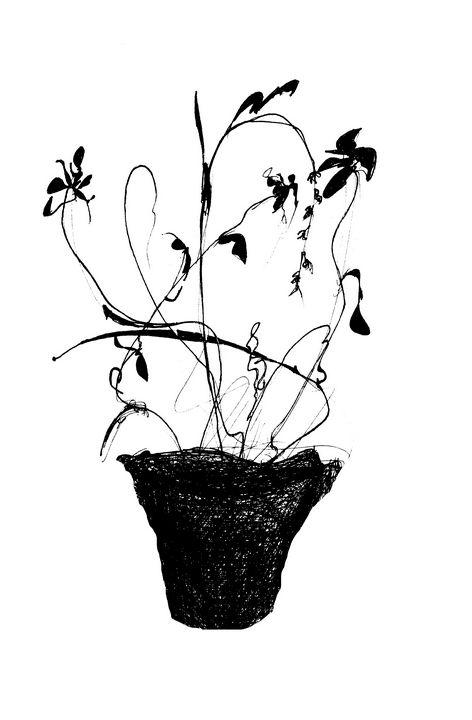 ink flowers - St.Mississippi
