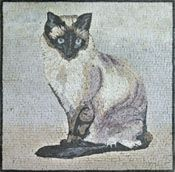 white and black cat mosaic - Mosaic Marble gallery