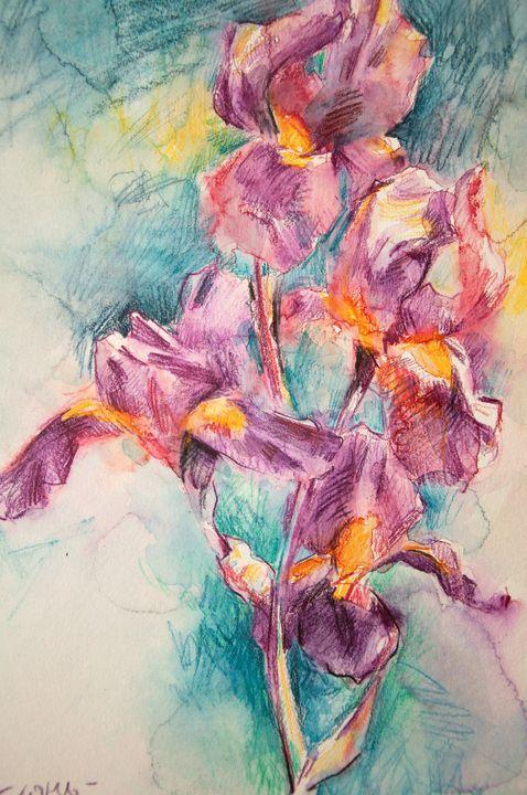 Pink irises - Daria & Sofia