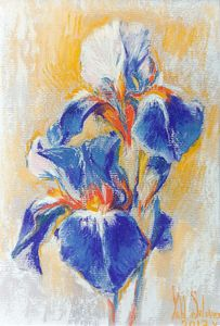 Flower power - Irises #3