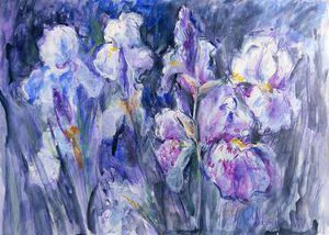 Flower power - Nighttime Irises #5