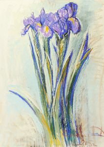 Flower power - Irises #1