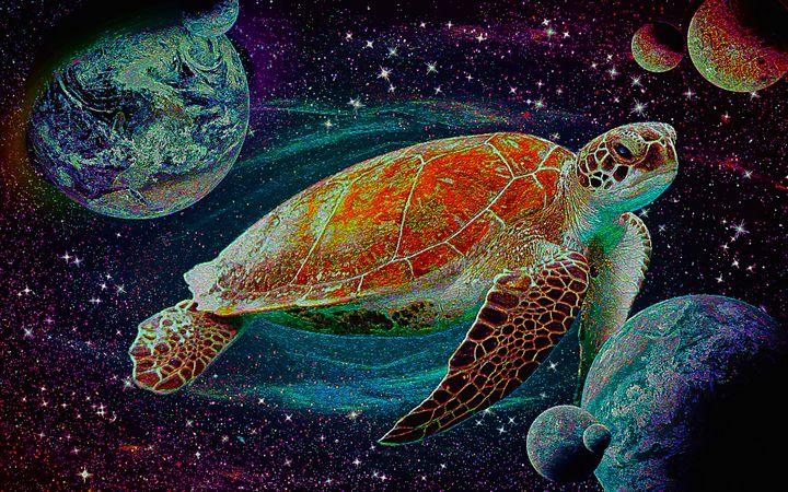Star Turtle - alexmir