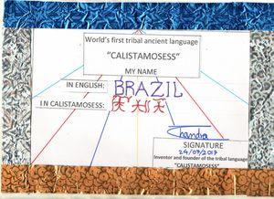 BRAZIL i CALISTAMOSESS