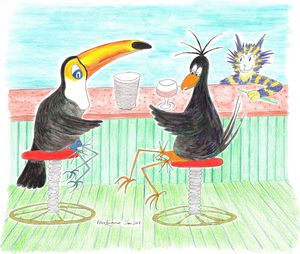 Crow, Toucan & Too Large A Drink