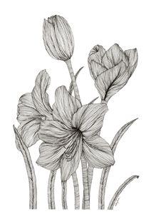 Flowers - Devika