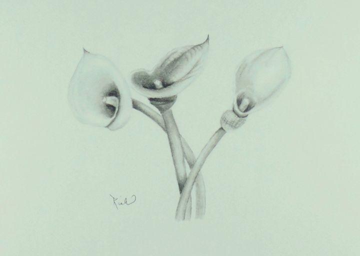 Lilies - Richard's Creations
