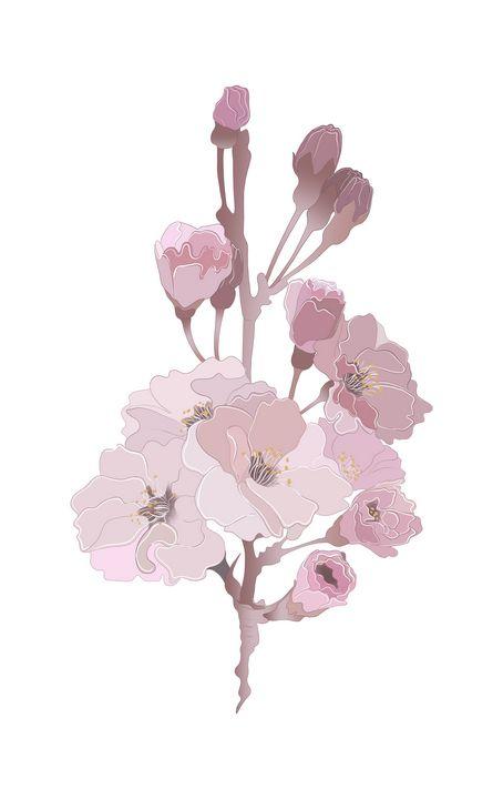 pink flowers - Lekatarino