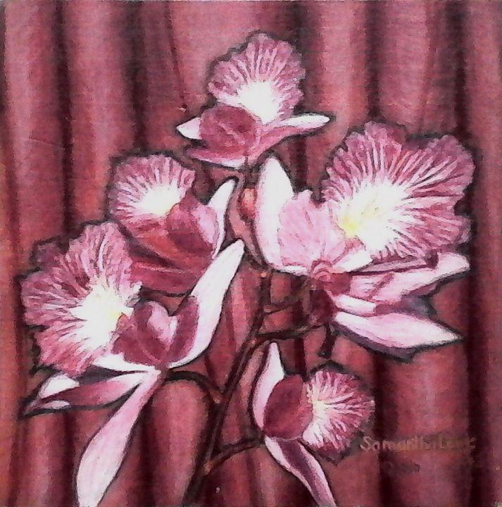 Burgundy Floral - Samantha Lewis