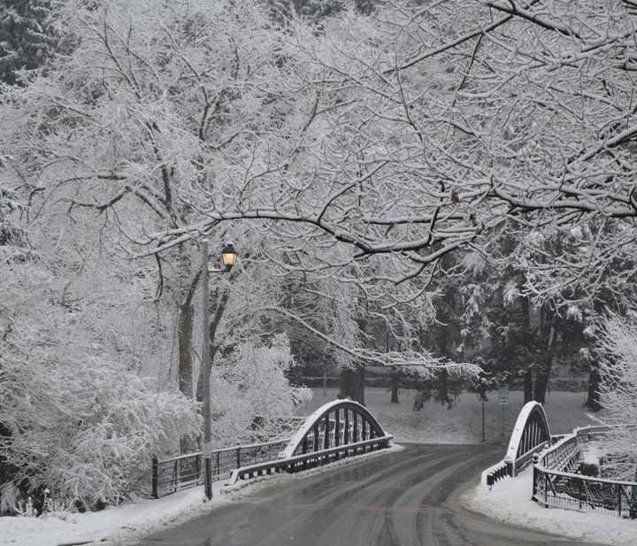 Winter Canvas - tiffanycassanophotography