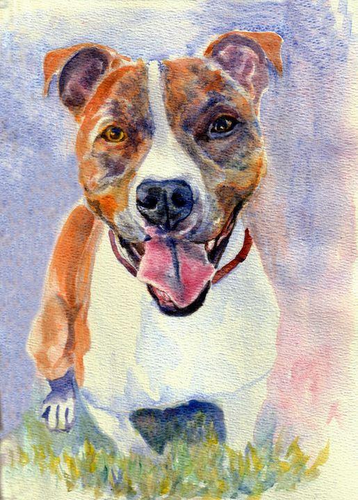 Pit bulldog smile - Lucie Mizutani