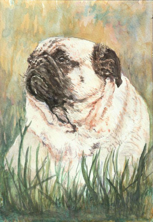 Pug in the grass - Lucie Mizutani