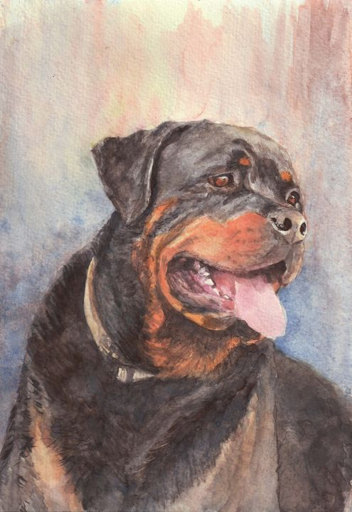 Rottweiler dog portrait - Lucie Mizutani