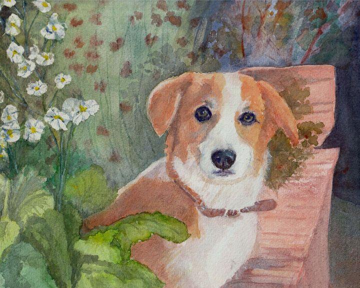 Jack Russell Terrier in a garden - Lucie Mizutani