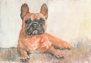French Bulldog from watercolor