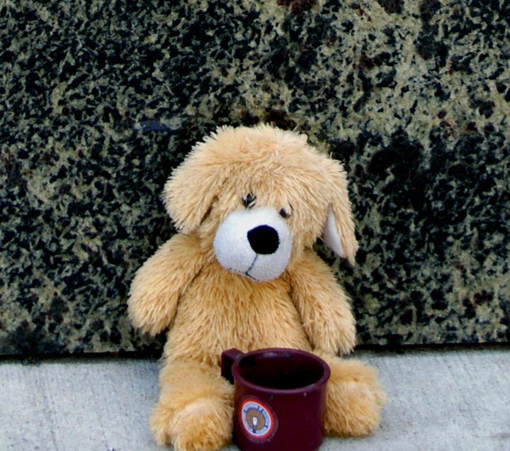 Panhandling Teddy - Turner Photography