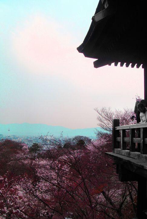 A Glimpse Beyond (Kyoto) - Julie Maxwell