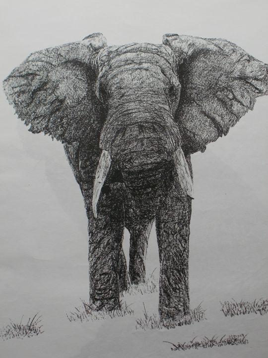 Elephant approaching - PlokimjuArt