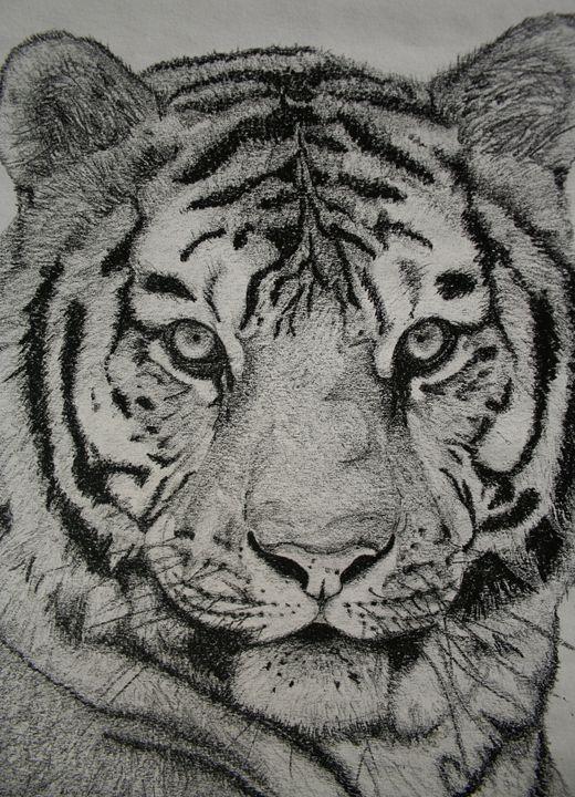Tiger Head - PlokimjuArt
