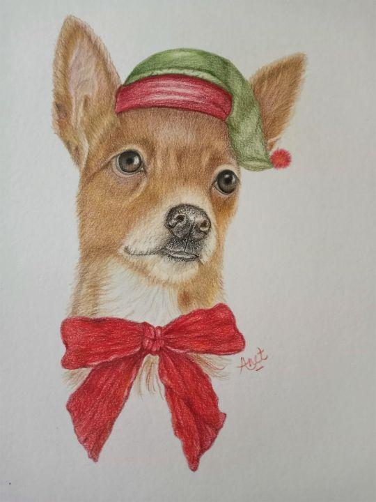 A Christmas Chihuahua - Pet Portraits By Anet