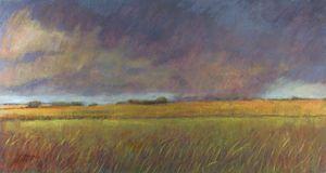 """""""Rain Over Prairie"""""""